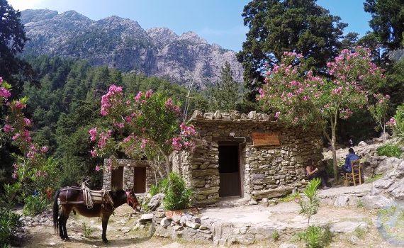 Grecja - Kreta - wycieczka do Wąwozu Samaria - Żelazne Wrota